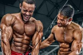 Master Bodybuilding & Fitness Degree - Certificação Internacional IFBB